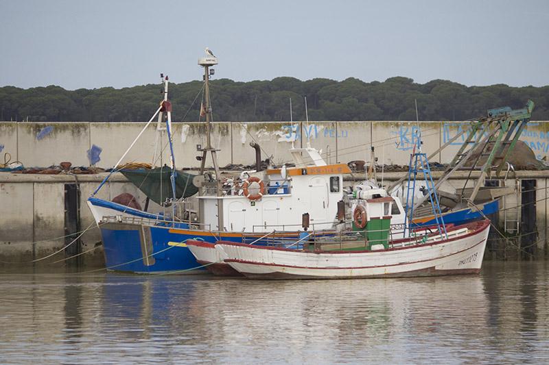 Buques pesqueros en el puerto sanluqueño de Bonanza. Foto JC Sánchez