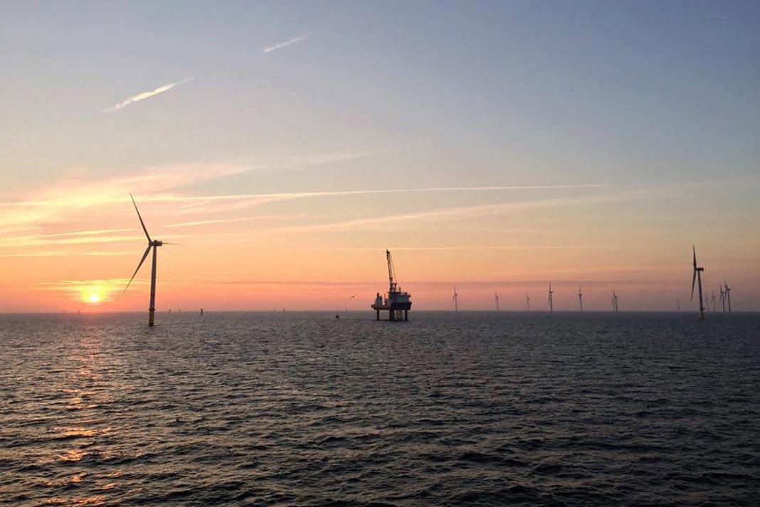 Vista de uno de los parques eólicos de la compañía danesa en el Mar del Norte